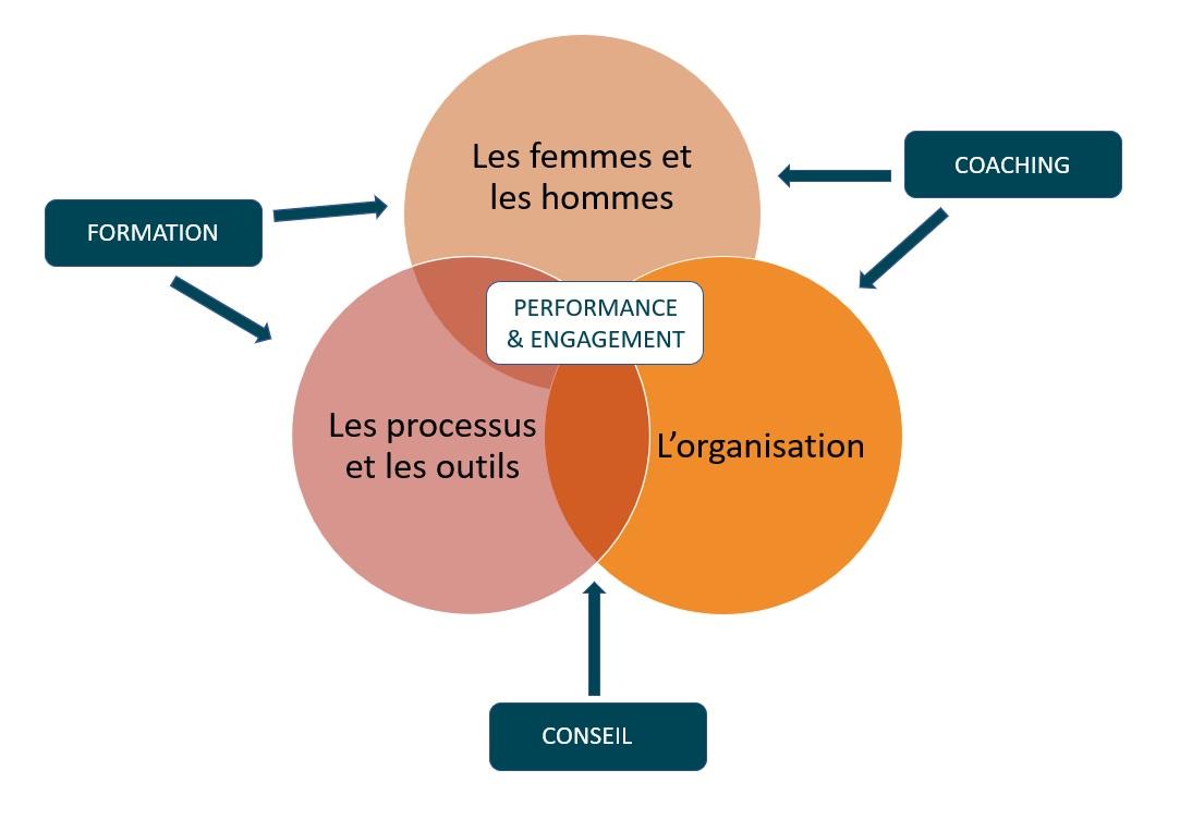 Schéma Amélioration de la performance des organisations